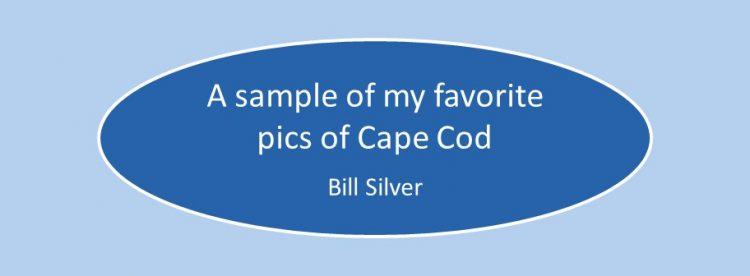 Cape Cod Pics (1)