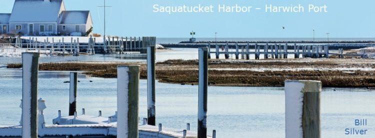 Cape Cod Pics (18)