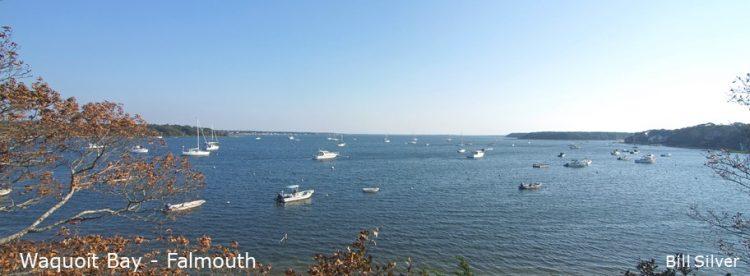 Cape Cod Pics (6)