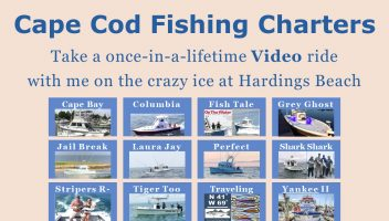 Bill SIlver Cape Cod Real Estate Lifestyle Fishing Charters